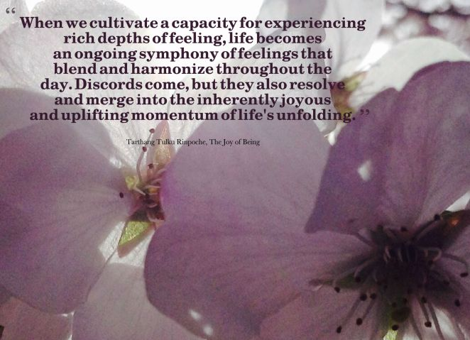 joyous momentum of life's unfolding