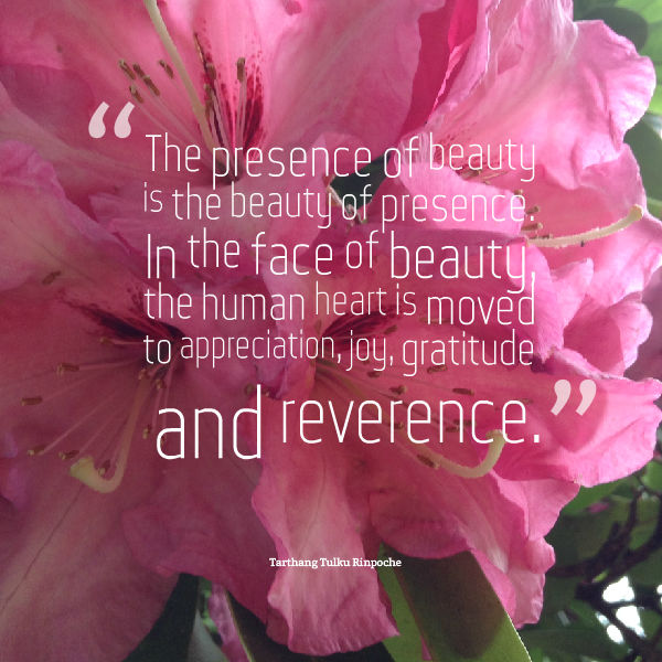 the presence of beauty