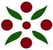 logo dancer burgundy-green